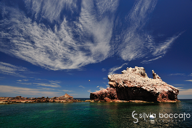 Reportage above and below of Baja California, Mexico by the underwater photographer Silvia Boccato